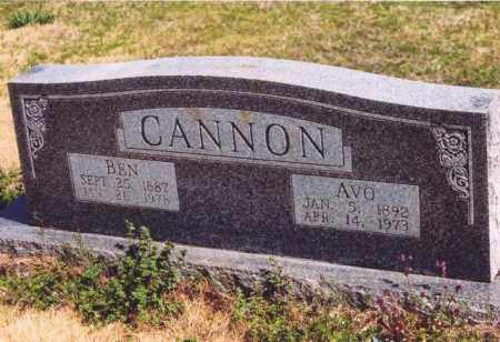 CANNON, AVO - Yell County, Arkansas | AVO CANNON - Arkansas Gravestone Photos