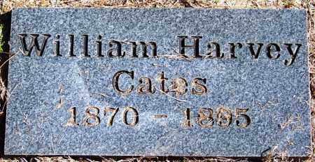 CATES, WILLIAM HARVEY - Yell County, Arkansas | WILLIAM HARVEY CATES - Arkansas Gravestone Photos