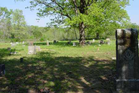 *RILEY CREEK OVERVIEW,  - Yell County, Arkansas |  *RILEY CREEK OVERVIEW - Arkansas Gravestone Photos
