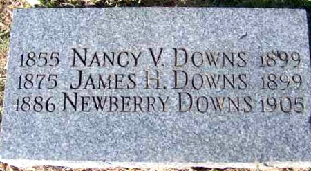 DOWNS, THENESON NEWBERRY - Yell County, Arkansas | THENESON NEWBERRY DOWNS - Arkansas Gravestone Photos