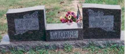 GEORGE, IVORY - Yell County, Arkansas | IVORY GEORGE - Arkansas Gravestone Photos