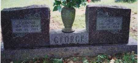 GEORGE, JOHNNIE TINA - Yell County, Arkansas | JOHNNIE TINA GEORGE - Arkansas Gravestone Photos
