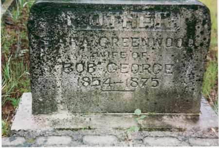 GEORGE, SARAH ANN - Yell County, Arkansas | SARAH ANN GEORGE - Arkansas Gravestone Photos