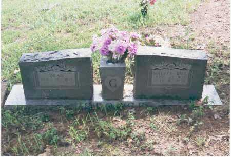 GEORGE, WALTER JOHN (BILL) - Yell County, Arkansas | WALTER JOHN (BILL) GEORGE - Arkansas Gravestone Photos