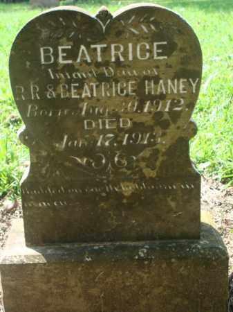 HANEY, BEATRICE - Yell County, Arkansas   BEATRICE HANEY - Arkansas Gravestone Photos