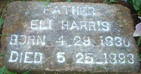 HARRIS, ELI - Yell County, Arkansas | ELI HARRIS - Arkansas Gravestone Photos