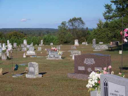 *OVERVIEW,  - Yell County, Arkansas |  *OVERVIEW - Arkansas Gravestone Photos