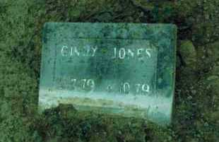 JONES, CINDY - Yell County, Arkansas | CINDY JONES - Arkansas Gravestone Photos