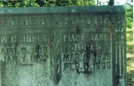 JONES, MARY JANE - Yell County, Arkansas | MARY JANE JONES - Arkansas Gravestone Photos