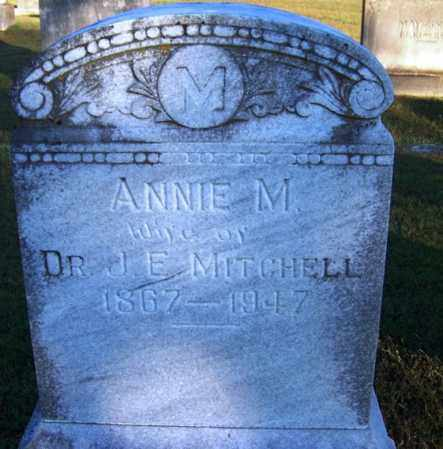 MITCHELL, ANNIE M - Yell County, Arkansas | ANNIE M MITCHELL - Arkansas Gravestone Photos
