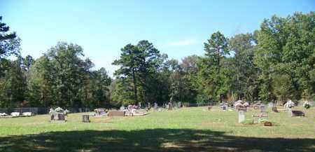 * OVERVIEW,  - Yell County, Arkansas |  * OVERVIEW - Arkansas Gravestone Photos