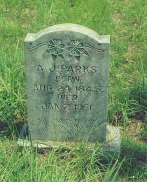 PARKS, A. J. - Yell County, Arkansas | A. J. PARKS - Arkansas Gravestone Photos