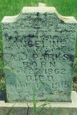 PARKS, ANGELINE - Yell County, Arkansas | ANGELINE PARKS - Arkansas Gravestone Photos