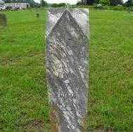 REED, PENCY - Yell County, Arkansas | PENCY REED - Arkansas Gravestone Photos