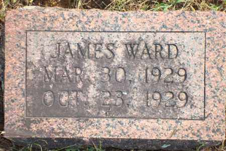 WARD, JAMES - Yell County, Arkansas | JAMES WARD - Arkansas Gravestone Photos