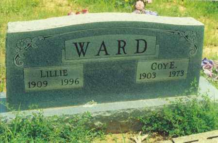 WARD, LILLIE - Yell County, Arkansas | LILLIE WARD - Arkansas Gravestone Photos