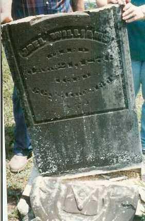 WILLIAMS, JOEL - Yell County, Arkansas | JOEL WILLIAMS - Arkansas Gravestone Photos