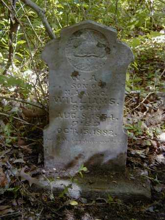 WILLIAMS, W A - Yell County, Arkansas | W A WILLIAMS - Arkansas Gravestone Photos