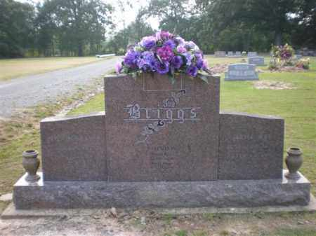 BRIGGS, JESSIE - Arkansas County, Arkansas | JESSIE BRIGGS - Arkansas Gravestone Photos