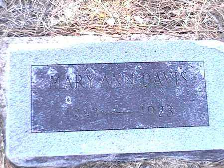 DAVIS, MARY ANN - Arkansas County, Arkansas | MARY ANN DAVIS - Arkansas Gravestone Photos