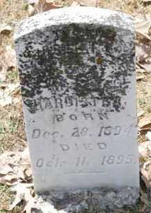 HARDISTER, INFANT - Arkansas County, Arkansas | INFANT HARDISTER - Arkansas Gravestone Photos