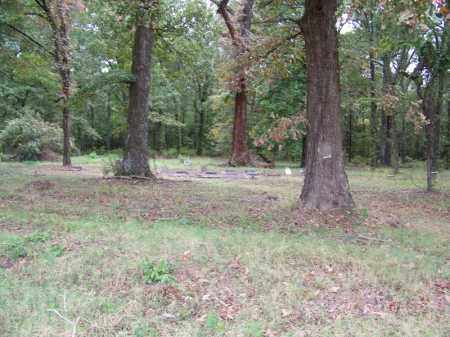*OVERVIEW,  - Arkansas County, Arkansas |  *OVERVIEW - Arkansas Gravestone Photos