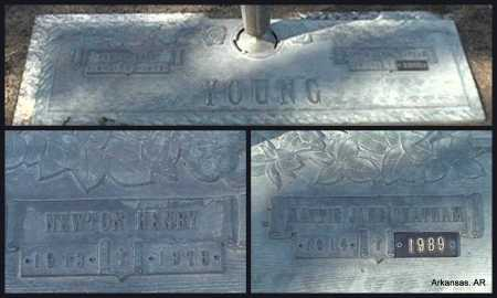 YOUNG  2, NEWTON HENRY - Arkansas County, Arkansas | NEWTON HENRY YOUNG  2 - Arkansas Gravestone Photos