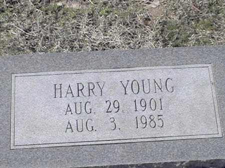 YOUNG, HARRY - Arkansas County, Arkansas | HARRY YOUNG - Arkansas Gravestone Photos