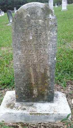 DEAL, JOSEPH - Ashley County, Arkansas | JOSEPH DEAL - Arkansas Gravestone Photos