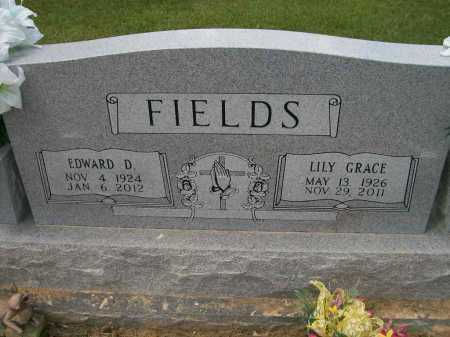 ROLAND FIELDS, LILY GRACE - Ashley County, Arkansas | LILY GRACE ROLAND FIELDS - Arkansas Gravestone Photos