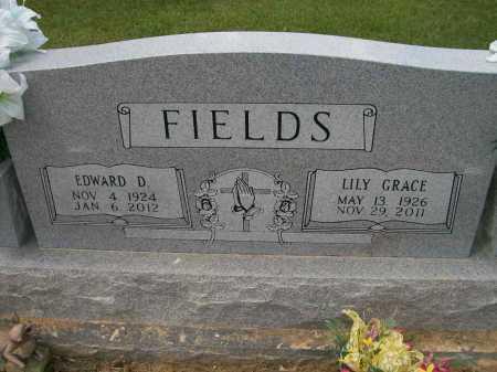 ROLAND FIELDS, LILY GRACE - Ashley County, Arkansas | LILY GRACE ROLAND FIELDS - Arkansas Gravestone Photos