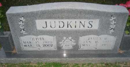 JUDKINS, OLIVIA - Ashley County, Arkansas | OLIVIA JUDKINS - Arkansas Gravestone Photos