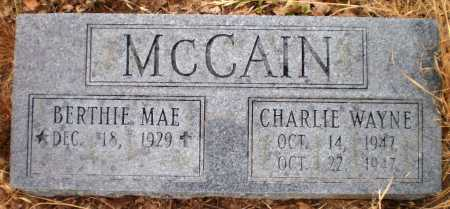 MCCAIN, CHARLIE WAYNE - Ashley County, Arkansas | CHARLIE WAYNE MCCAIN - Arkansas Gravestone Photos