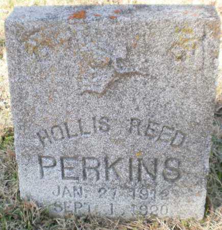 PERKINS, HOLLIS REED - Ashley County, Arkansas | HOLLIS REED PERKINS - Arkansas Gravestone Photos