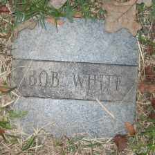WHITE, BOB - Ashley County, Arkansas | BOB WHITE - Arkansas Gravestone Photos