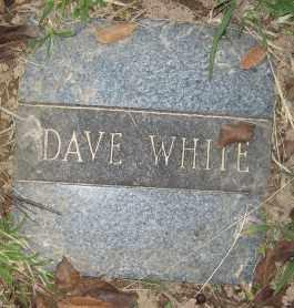 WHITE, DAVE - Ashley County, Arkansas | DAVE WHITE - Arkansas Gravestone Photos