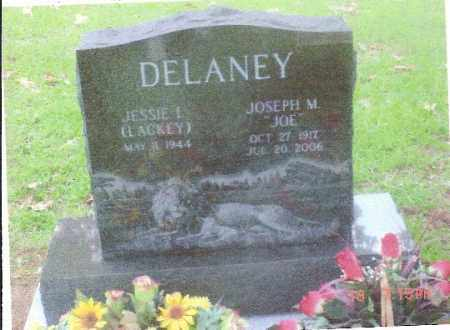 "DELANEY (VETERAN WWII), JOSEPH MICHAEL ""JOE"" - Baxter County, Arkansas 