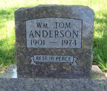 ANDERSON, WILLIAM TOM - Baxter County, Arkansas | WILLIAM TOM ANDERSON - Arkansas Gravestone Photos