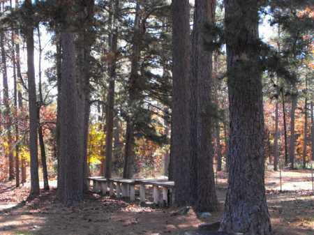 *, TABLE ROCK  PICNIC AREA - Baxter County, Arkansas | TABLE ROCK  PICNIC AREA * - Arkansas Gravestone Photos