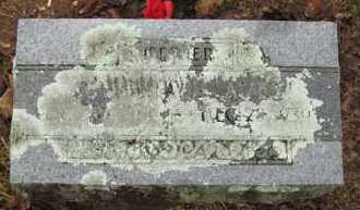 "AVEY, MARTHA JANE ""SIS"" - Baxter County, Arkansas 