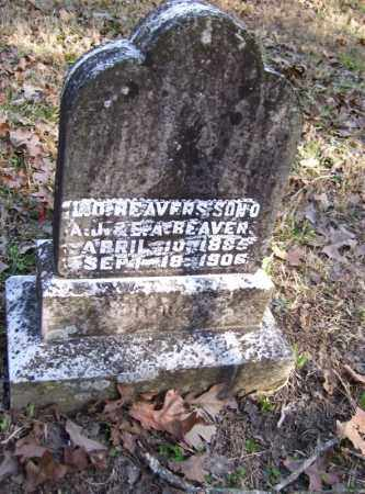 BEAVERS, L. O. - Baxter County, Arkansas | L. O. BEAVERS - Arkansas Gravestone Photos