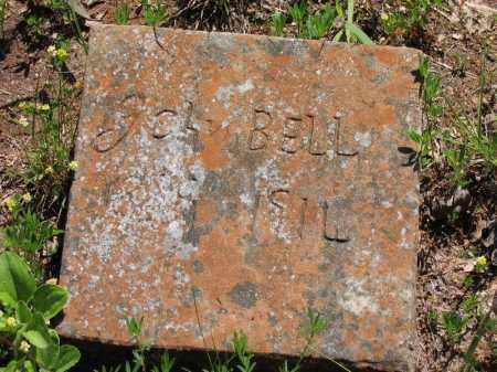 BELL, JOHN - Baxter County, Arkansas | JOHN BELL - Arkansas Gravestone Photos