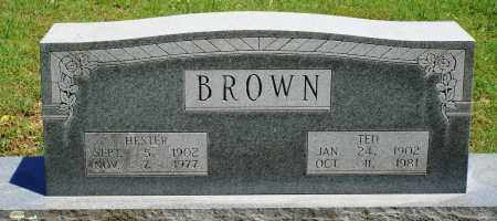 BROWN, TED - Baxter County, Arkansas | TED BROWN - Arkansas Gravestone Photos