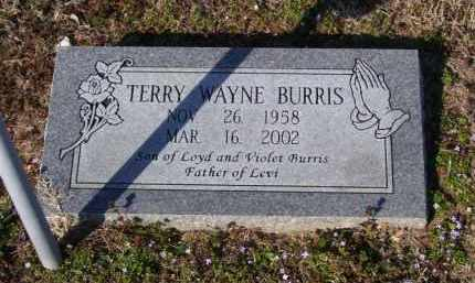 BURRIS, TERRY WAYNE - Baxter County, Arkansas | TERRY WAYNE BURRIS - Arkansas Gravestone Photos