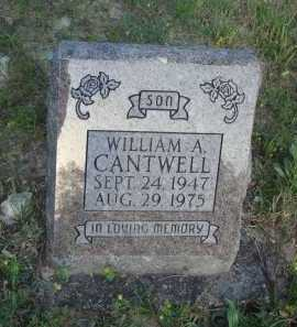 CANTWELL, WILLIAM A. - Baxter County, Arkansas | WILLIAM A. CANTWELL - Arkansas Gravestone Photos
