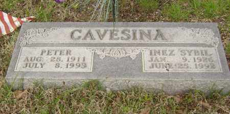 CAVESINA, PETER - Baxter County, Arkansas | PETER CAVESINA - Arkansas Gravestone Photos