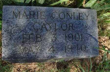 CONLEY CAYLOR, MARIE - Baxter County, Arkansas | MARIE CONLEY CAYLOR - Arkansas Gravestone Photos
