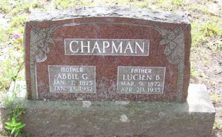 CHAPMAN, ABBIE G. - Baxter County, Arkansas | ABBIE G. CHAPMAN - Arkansas Gravestone Photos