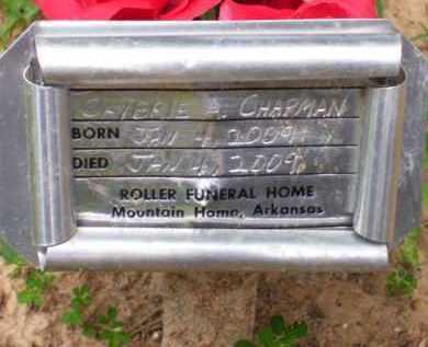 CHAPMAN, CAYBRIE AILEEN - Baxter County, Arkansas | CAYBRIE AILEEN CHAPMAN - Arkansas Gravestone Photos