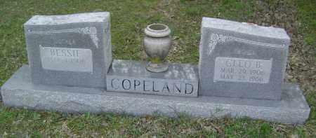 COPELAND, CLEO B. - Baxter County, Arkansas | CLEO B. COPELAND - Arkansas Gravestone Photos